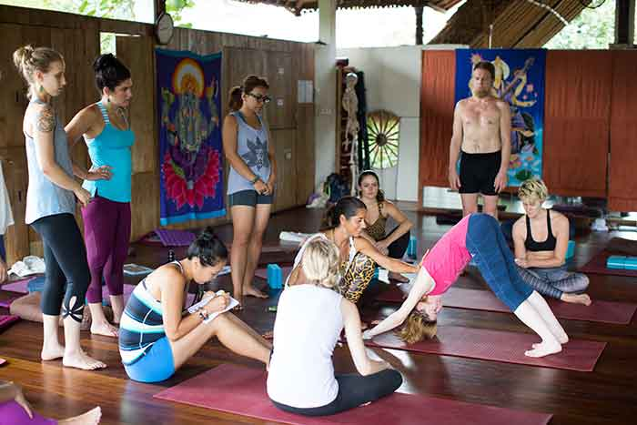 catkabira.com - yoga energetics teacher trainings